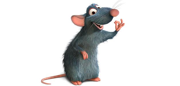 Крыса чихает что делать