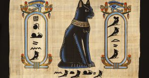 Кошки в Египте – почему их считают священными животными